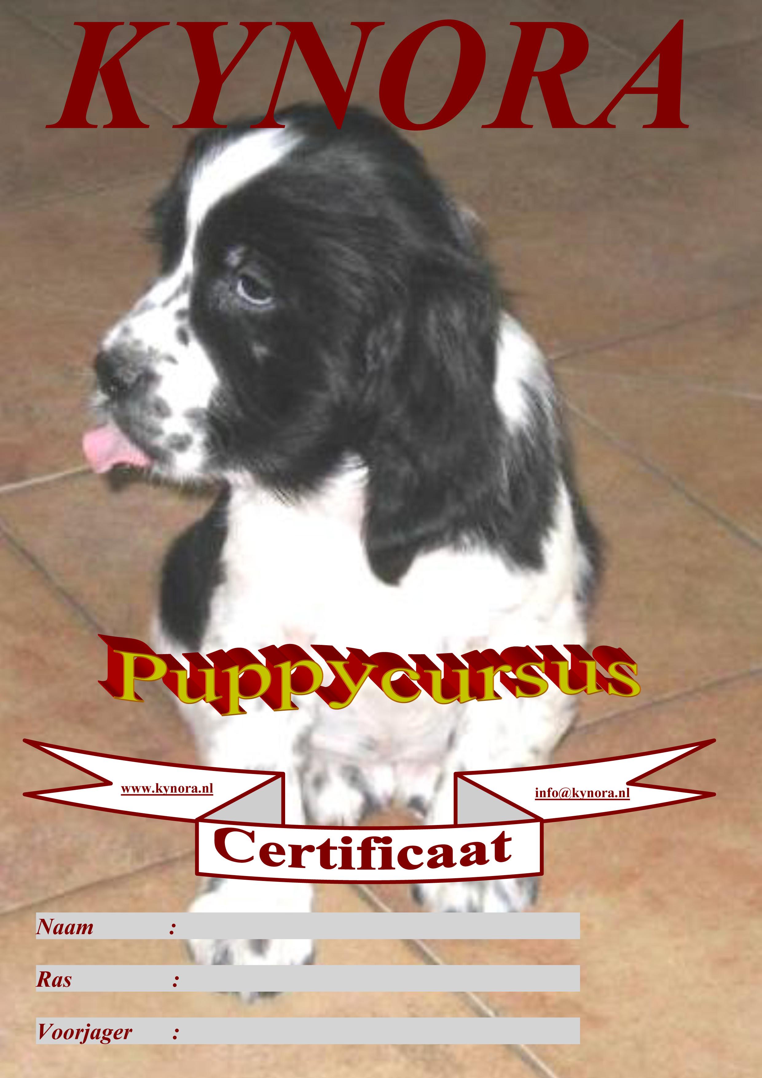 Certificaat Puppy cursus